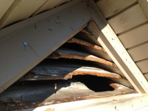 Vent damaged by squirrels.